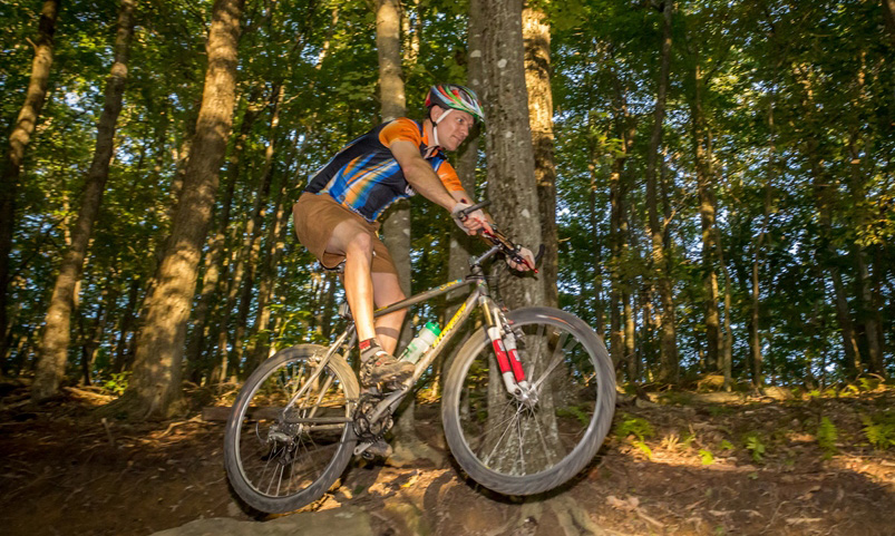 Picture of mountain biker