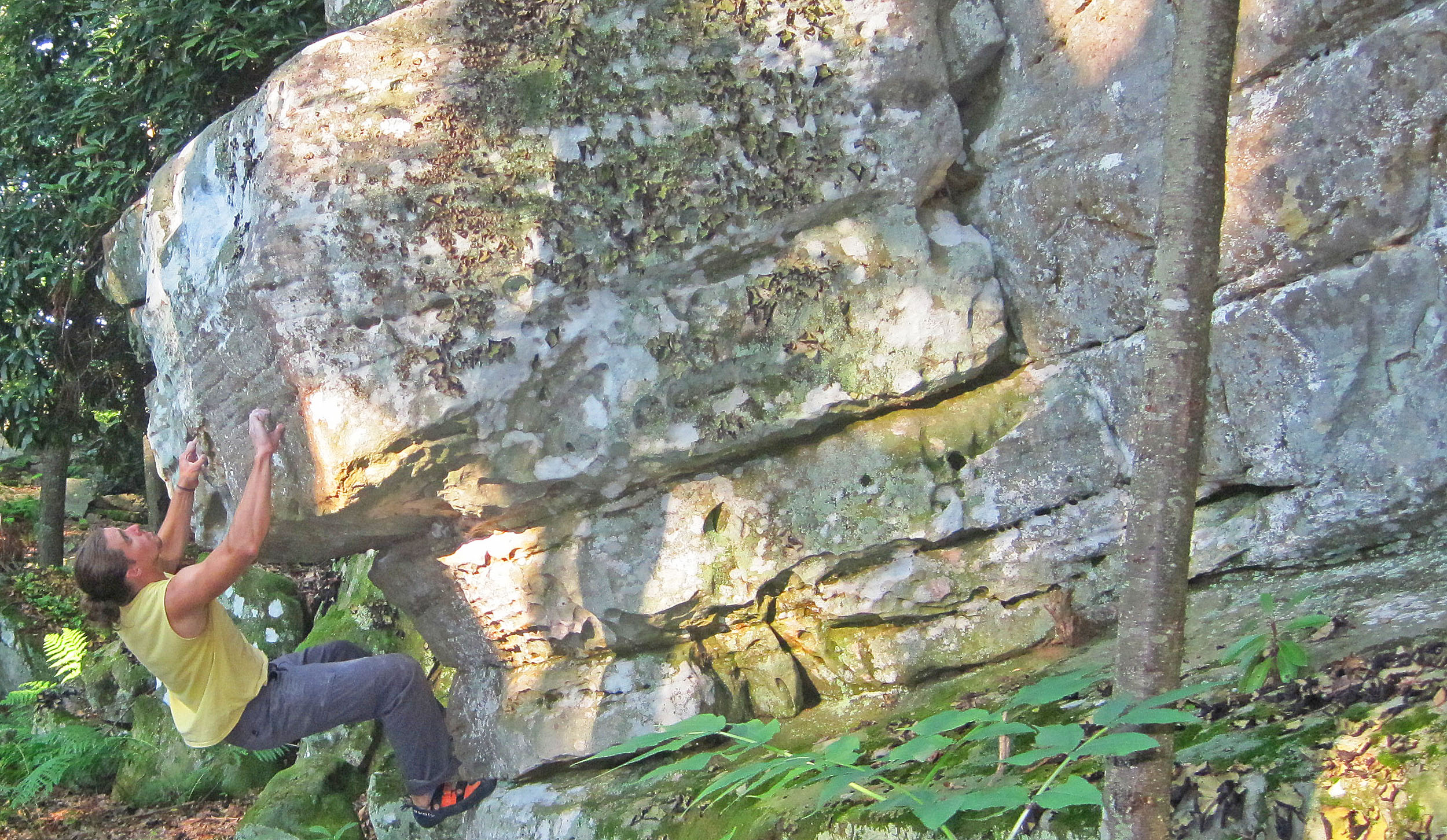 Picture of rock climber in Flag Rock Recreation Area