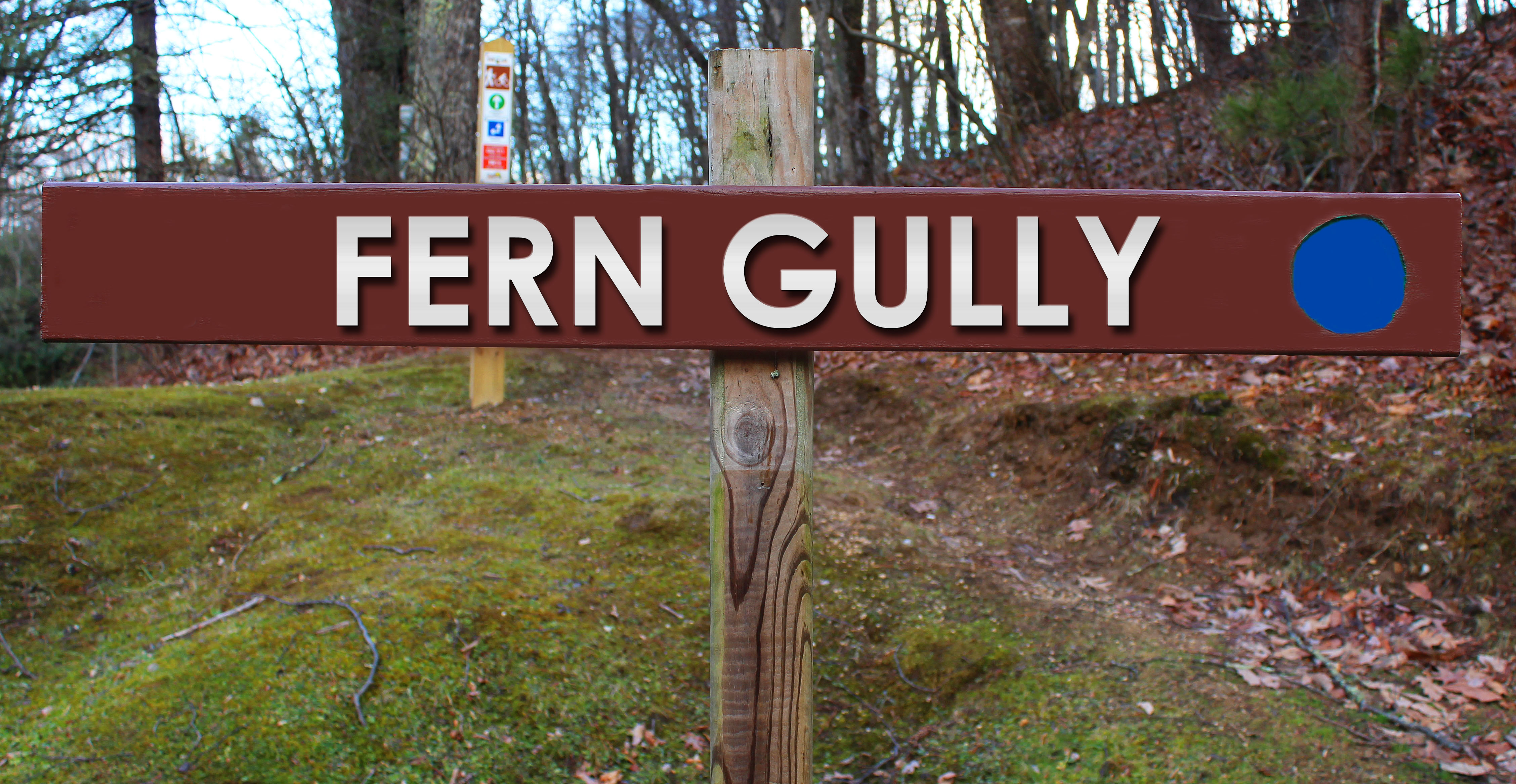 Picture of Fern Gully trail sign