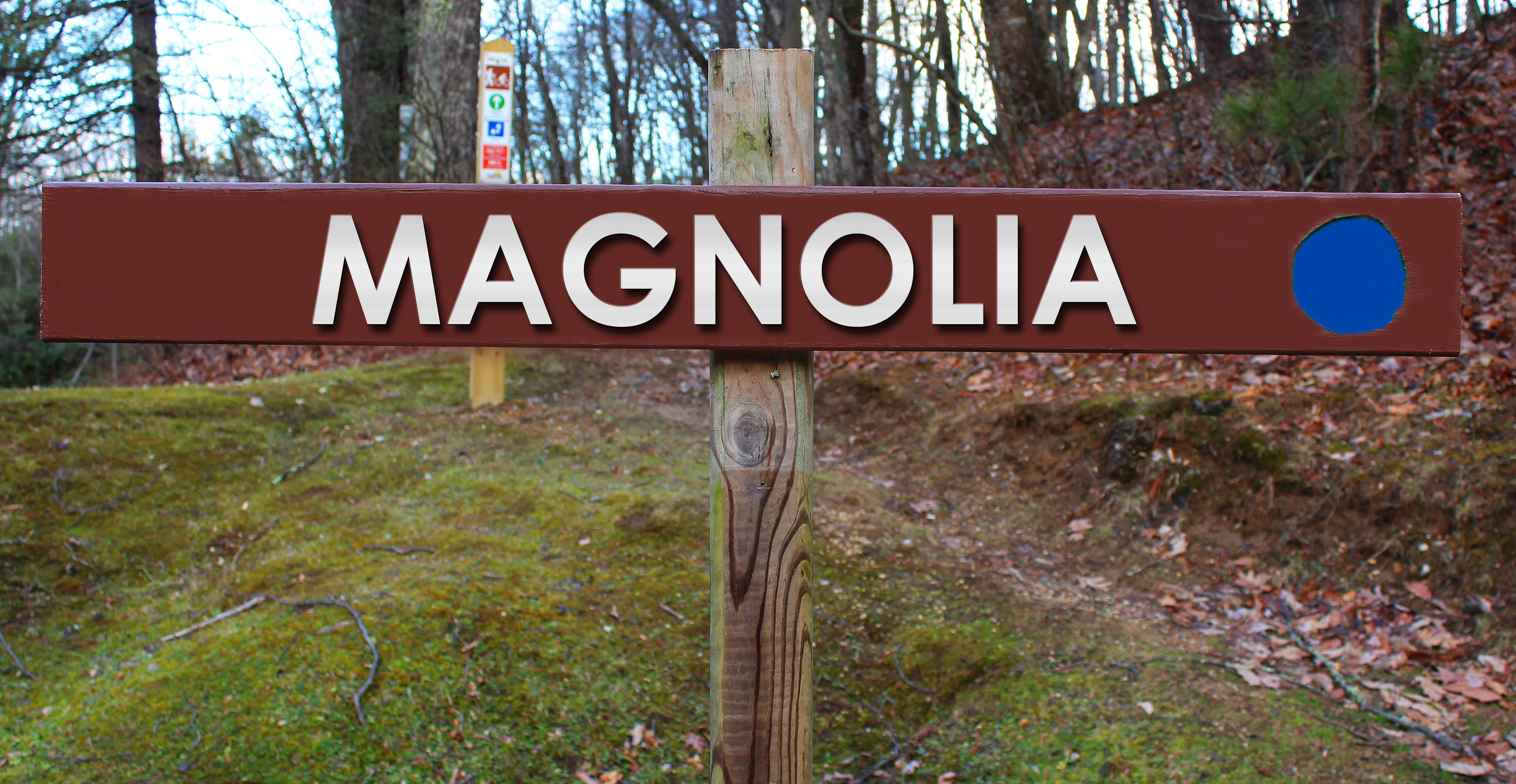 Picture of Magnolia trail sign